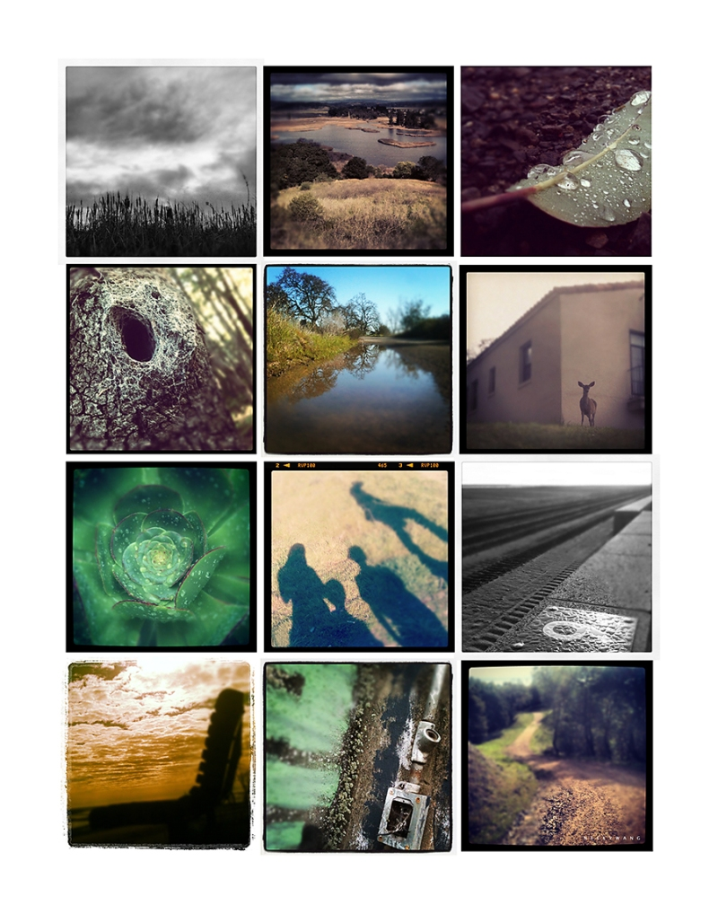 instagram collage of hiking images