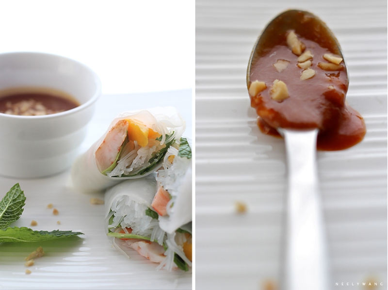 recipe for vietnamese spring rolls and peanut sauce