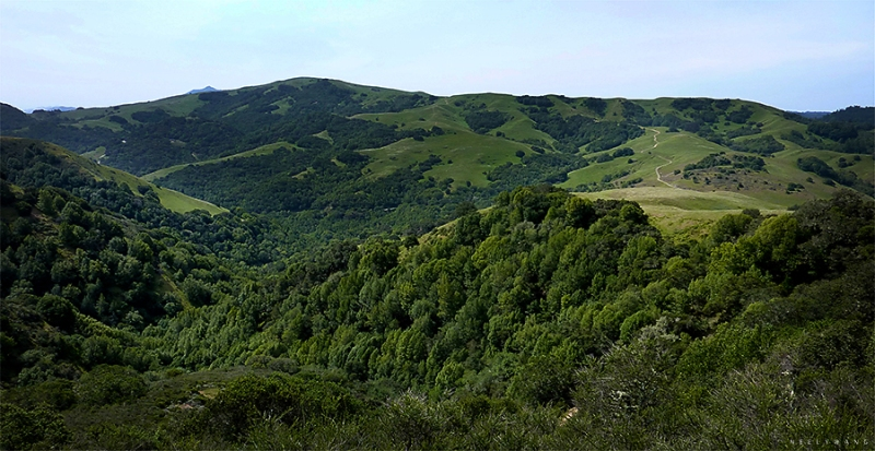 lucas valley open space