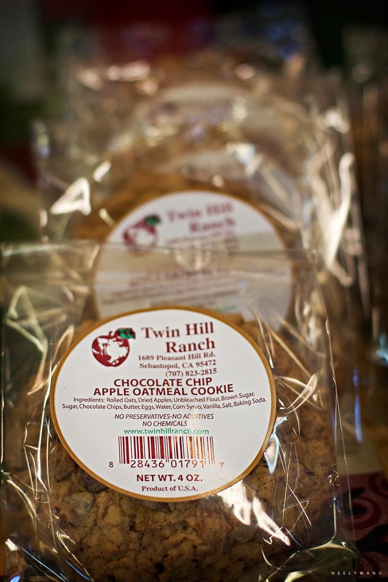 apple picking at twin hill farms, sebastopol, california