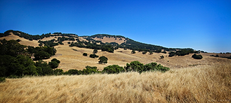 mt. burdell, novato. california