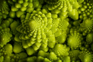 romanesco broccoli food photography
