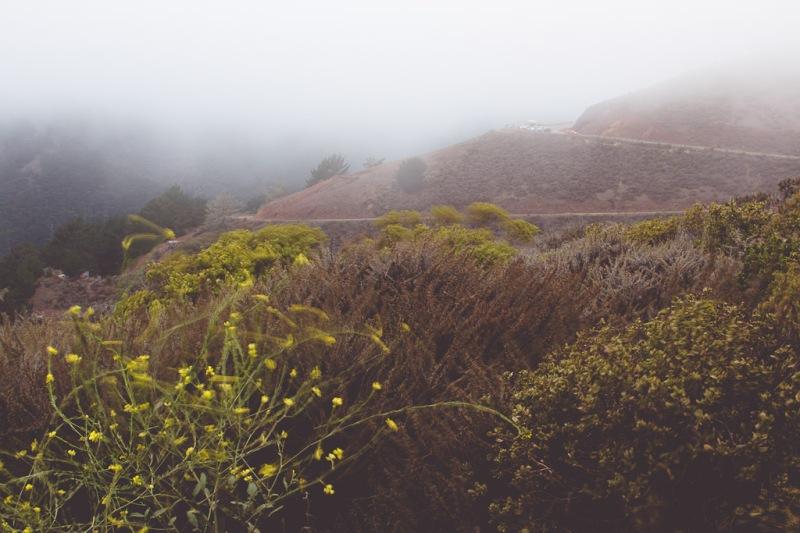 Marin Headlands | Neely Wang