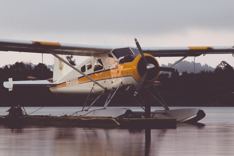 Sea Plane | Neely Wang